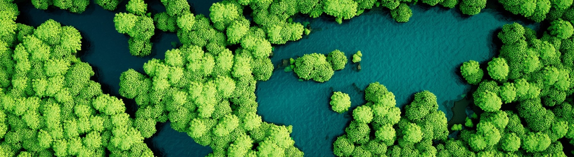 Visa sustainability case study images