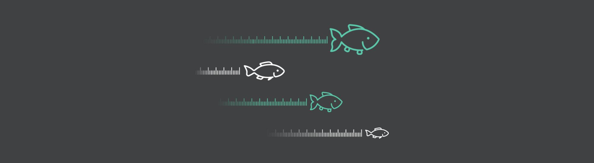 Measurement Just keep swimming HEAD