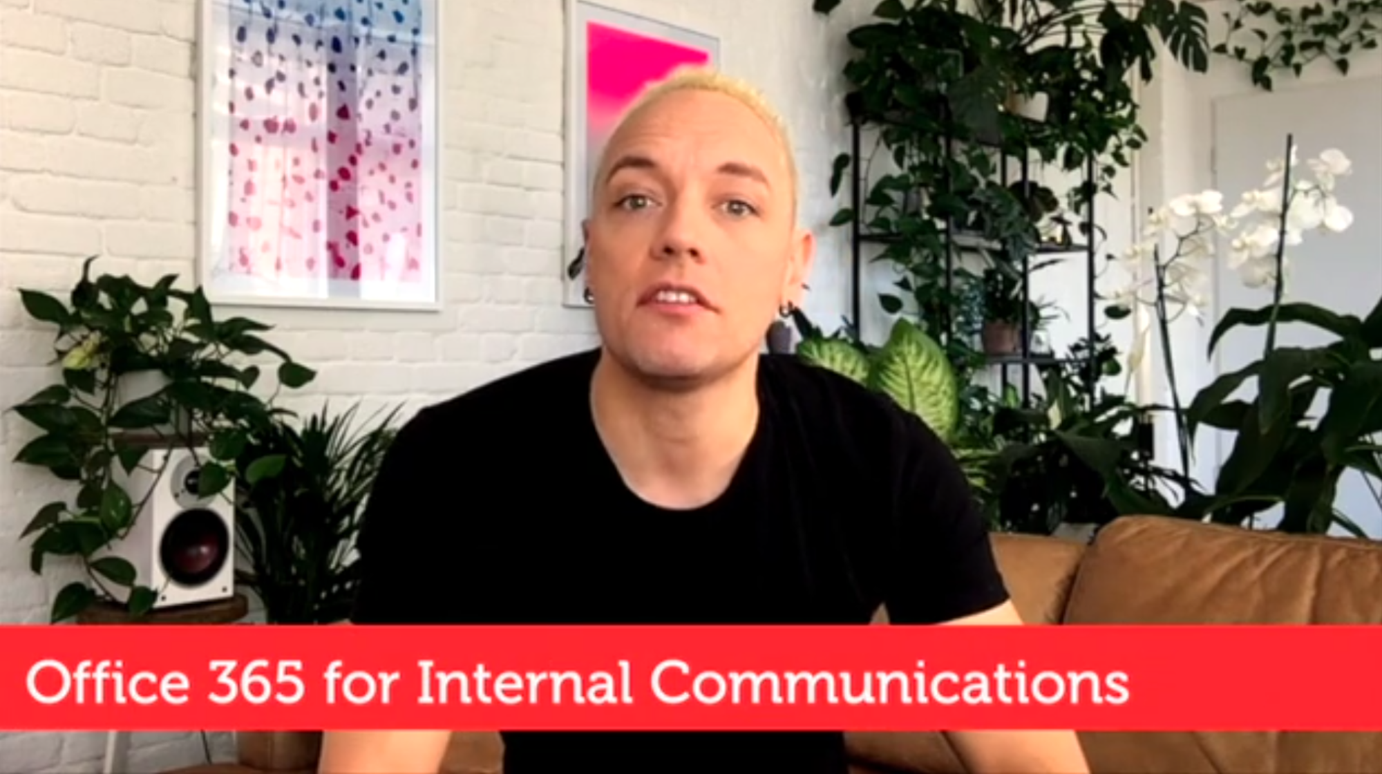 Optimising Office365 for internal comms